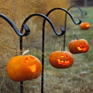 Path of Pumpkins