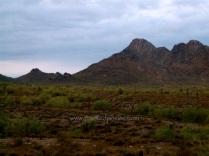 Desert Mountain Morning