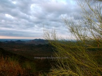 Palo Verde and Clouds