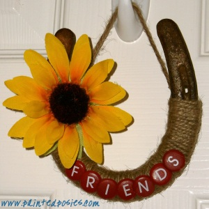 Friends Horseshoe