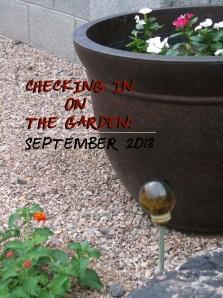 Checking In On The Garden September 2013
