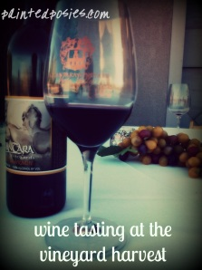 wine tasting at the vineyard harvest