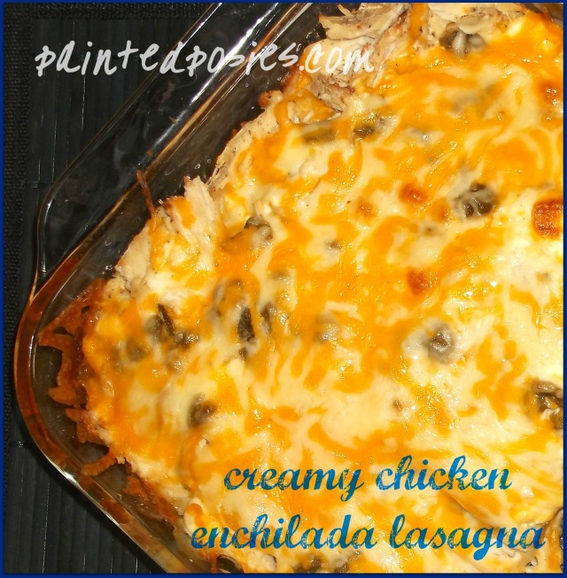 Creamy Chicken Enchilada Lasagna