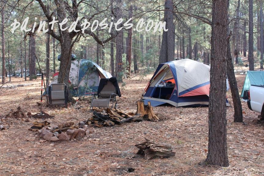 Campsite in Rim Country