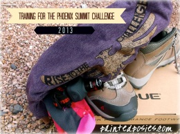 http://paintedposies.com/2013/11/18/phoenix-summit-challenge-supply-list/