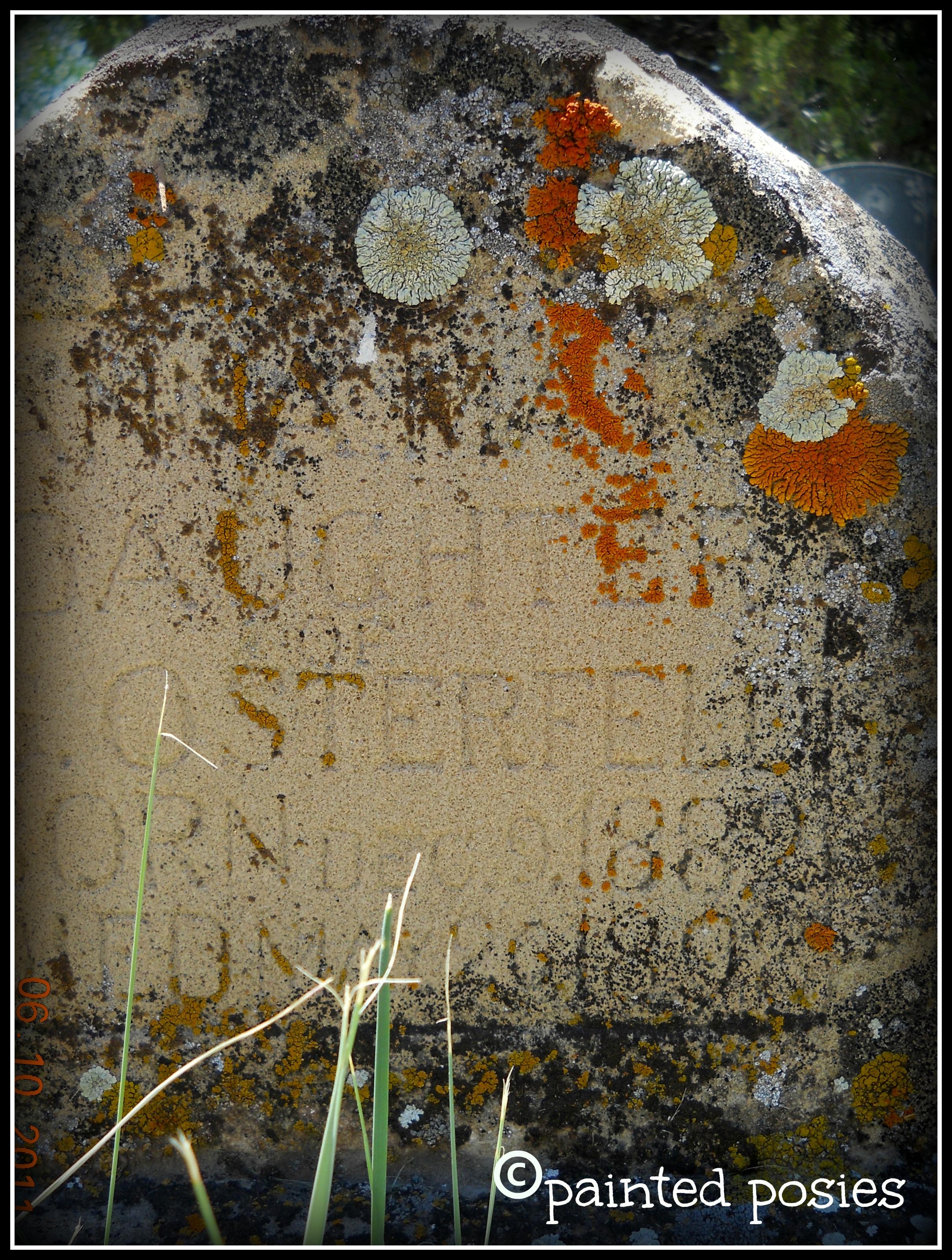 Colorado Headstone 2011