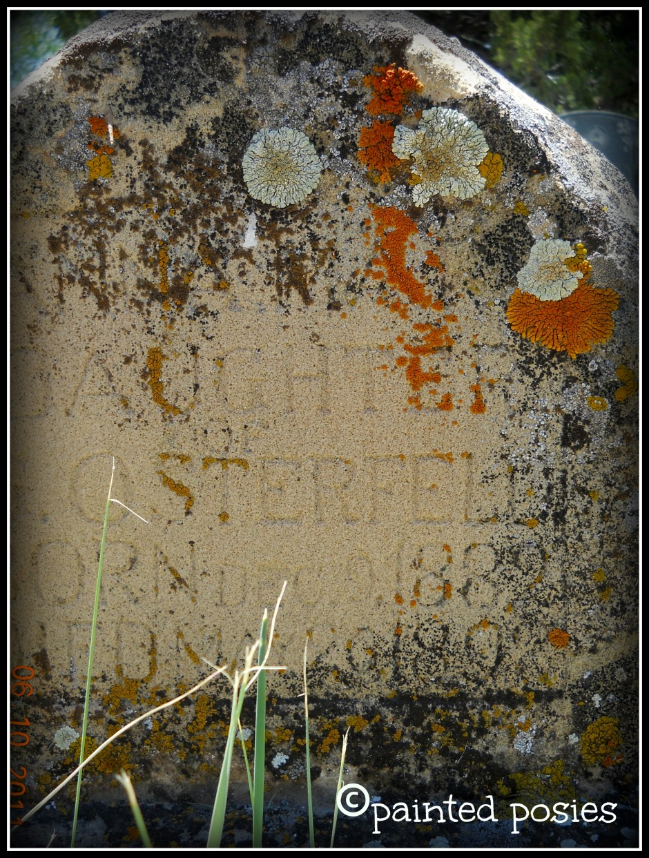 Colorado Headstone 2011