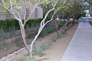 Downtown Phoenix Symmetry