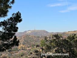 Griffith Park, LA, California