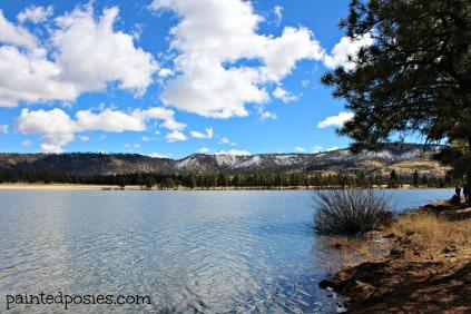 Northern Arizona Lake