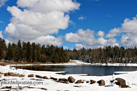 Pinetop Lake