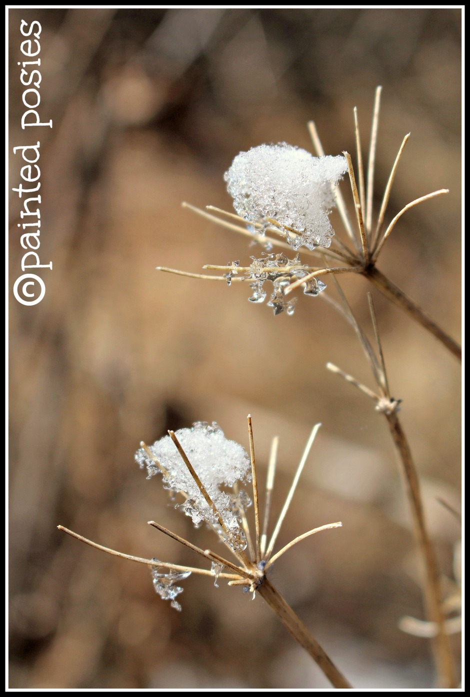 Smallest Ice Crystals