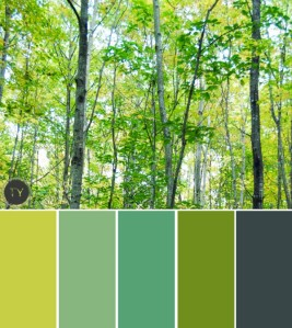 http://www.kimlewisdesigns.com/feature-posts/by-ty-pennington/soak-up-summer-palettes_-by-ty-pennington