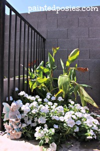 Vincas and Lilies May 2014