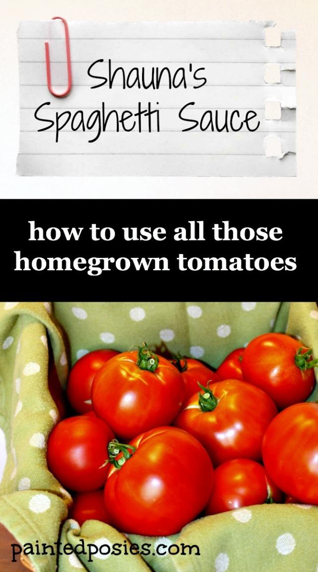 Shauna's Spaghetti Sauce Recipe Card
