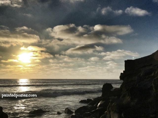 Ocean Beach Cliff 2014
