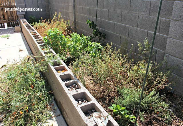 August 2014 Raised Bed Garden