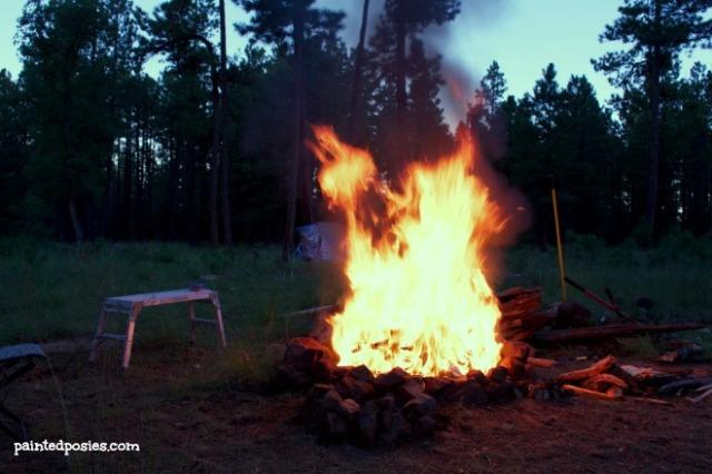 Campfire August 2014