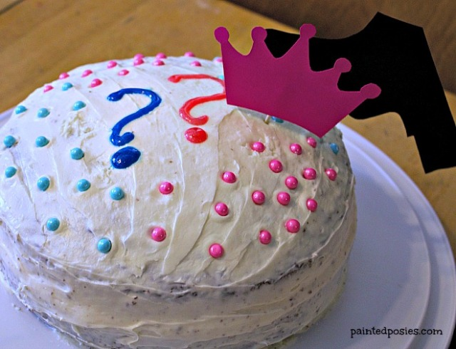 Gender Reveal Party Cake September 2014
