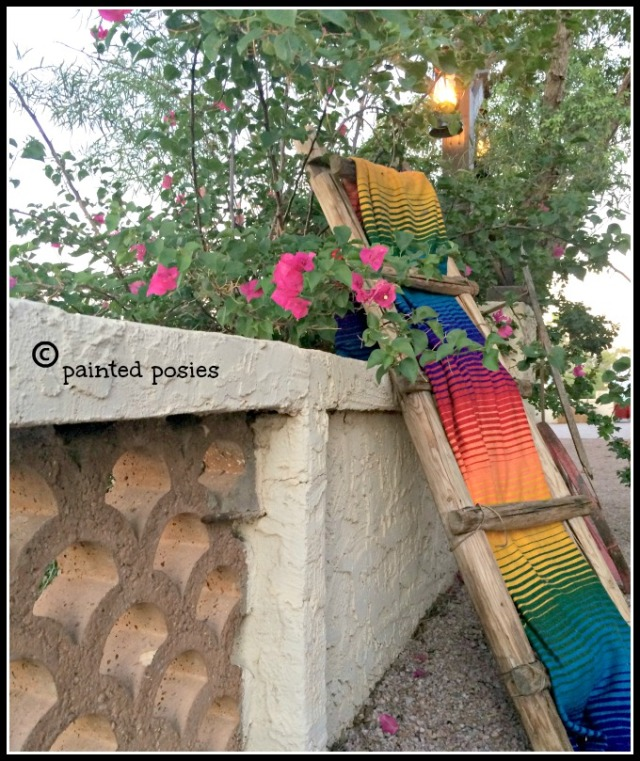 Mexican Ladder Rustlers Roost