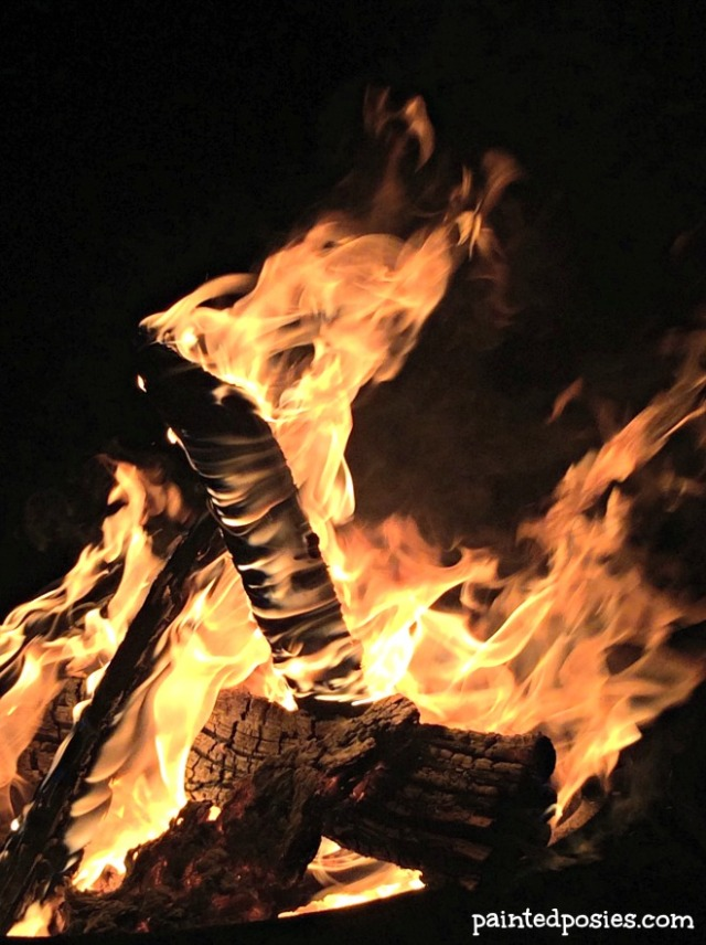 Fire Thanksgiving Camping Mogollon Rim
