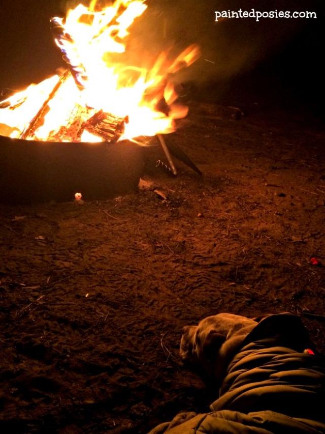 Jones Fireside LL Bean Pet Parka Mogollon Rim