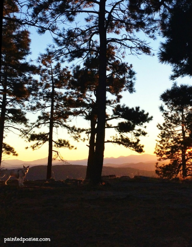 Jones Mogollon Rim Sunset Silhouette