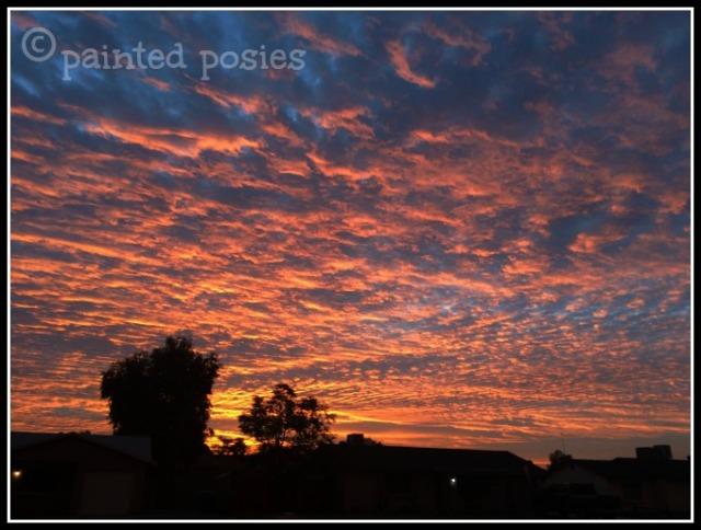 Sunset Wandering Eye Wednesday