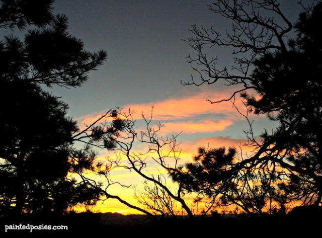 Thanksgiving Camping Mogollon Rim Sunset Silhouette