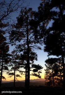 Thanksgiving Camping Silhouette 3 November 2014