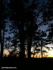 Thanksgiving Camping Silhouette 5 November 2014