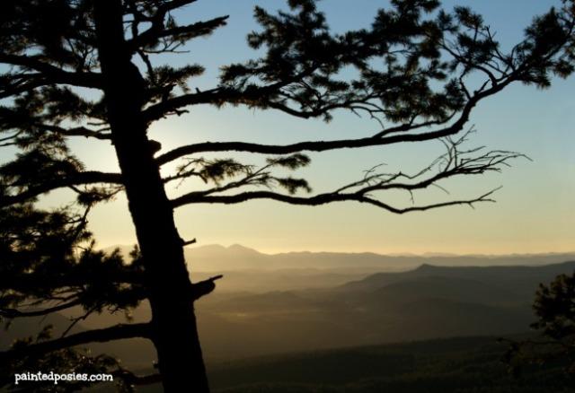 Mogollon Rim Yellow Sunset Wandering Eye Wednesday